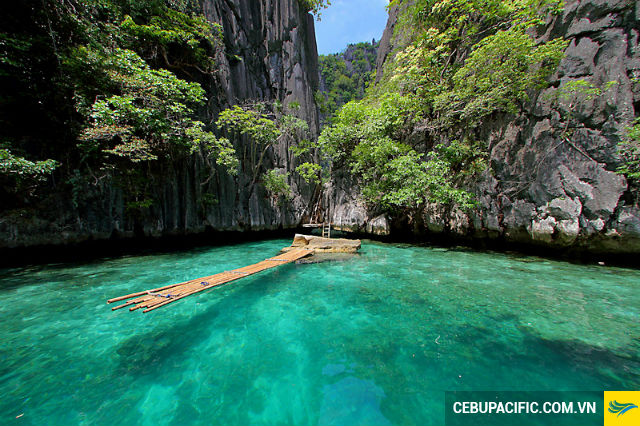 ve-may-bay-di-coron-2