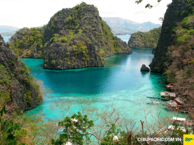 ve-may-bay-di-coron-3