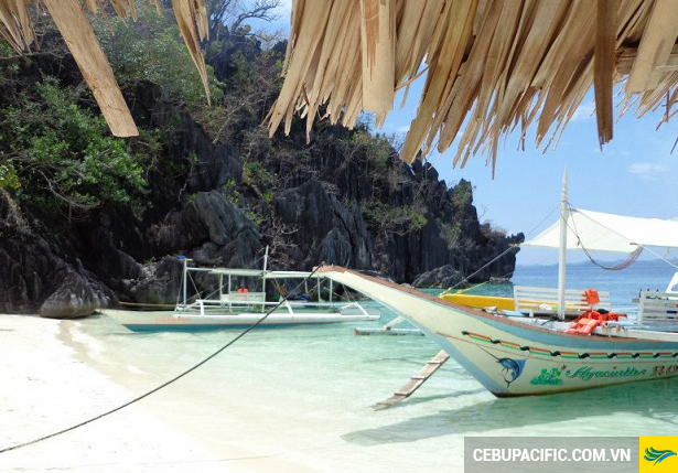 ve-may-bay-di-coron