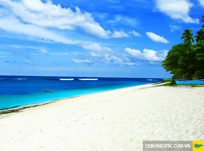 ve may bay di siargao gia re